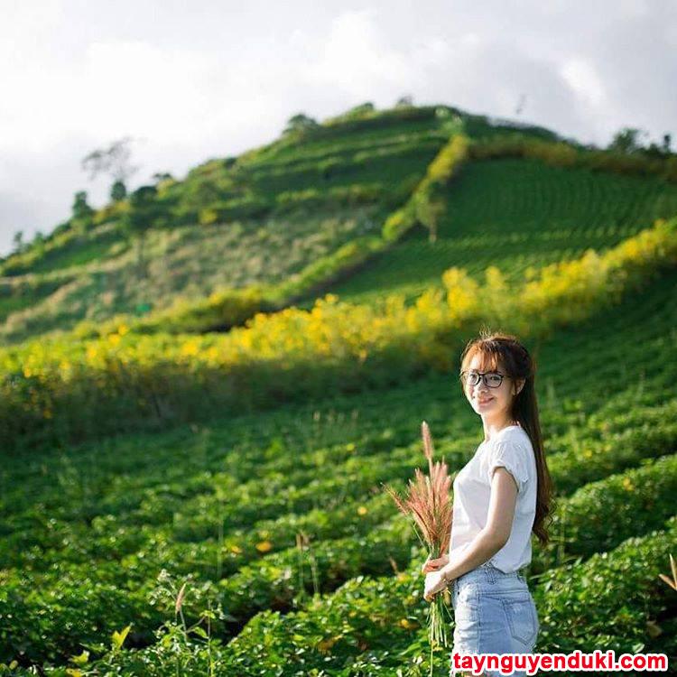 Model Gorden Terbaru 2018 Dan Harganya  nha ng a a a a ia m du la ch a a naoµng a ao p tuya t va i du la ch ta y